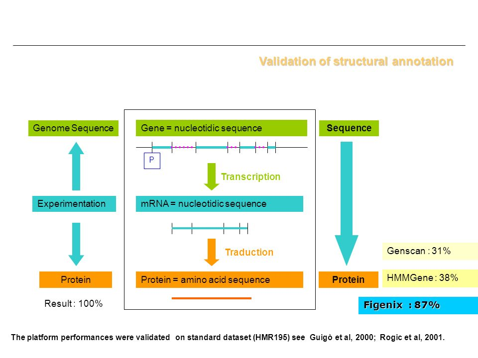 Validation of structural annotation
