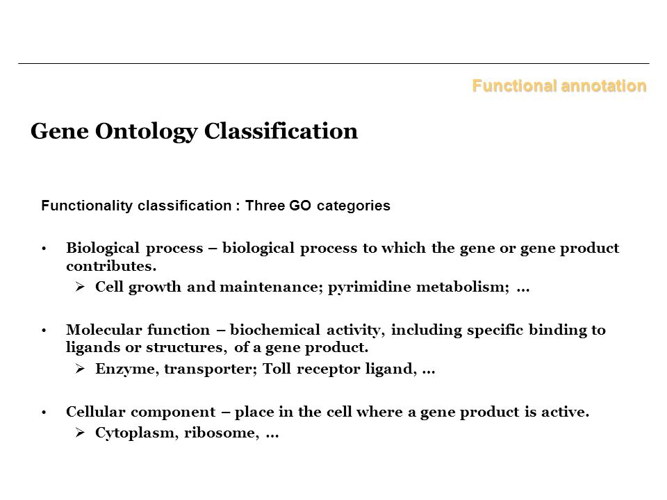 Gene Ontology Classification