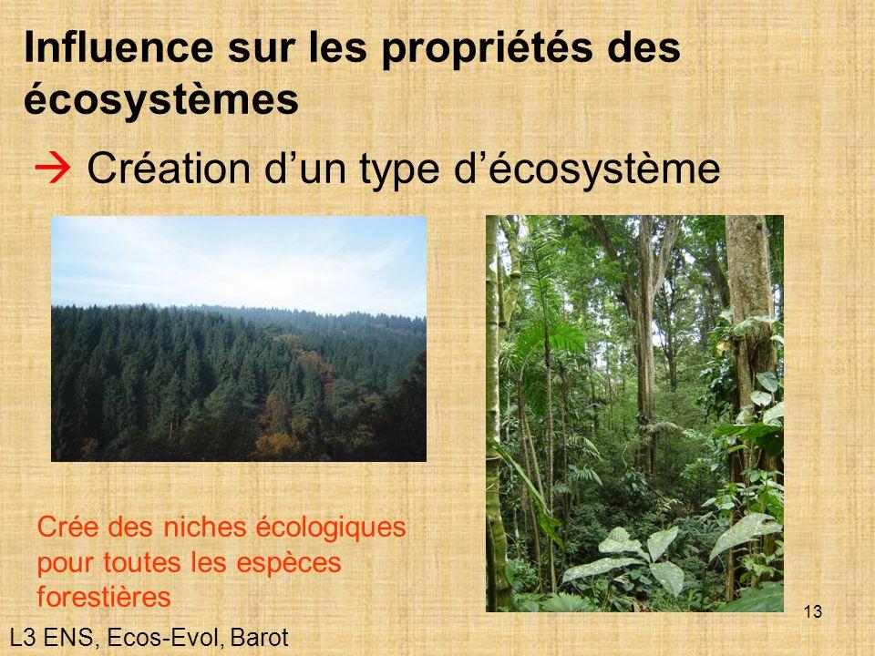 Influence sur les propriétés des écosystèmes