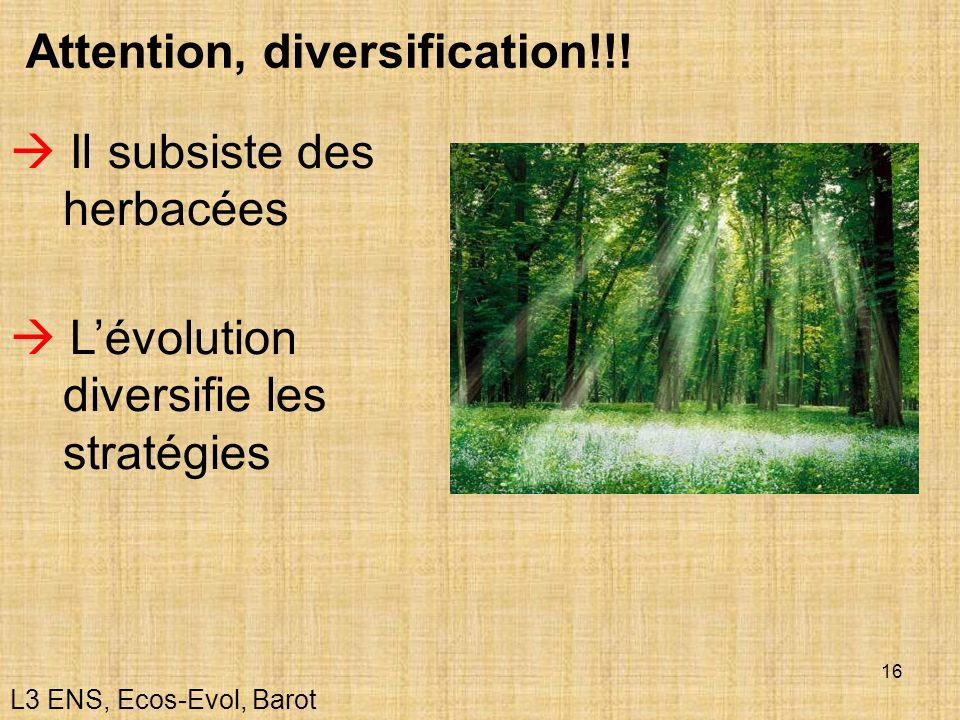 Attention, diversification!!!