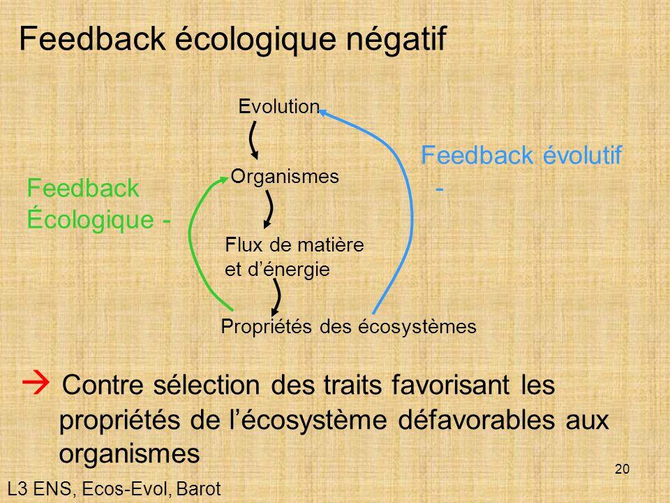 Feedback écologique négatif