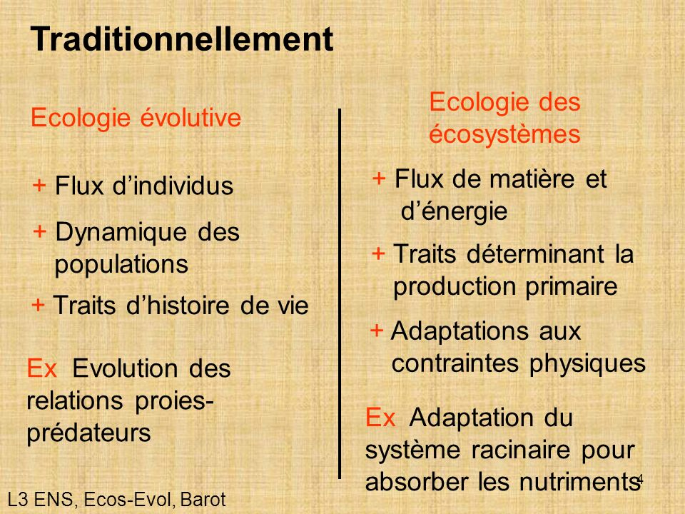 Traditionnellement Ecologie des écosystèmes Ecologie évolutive