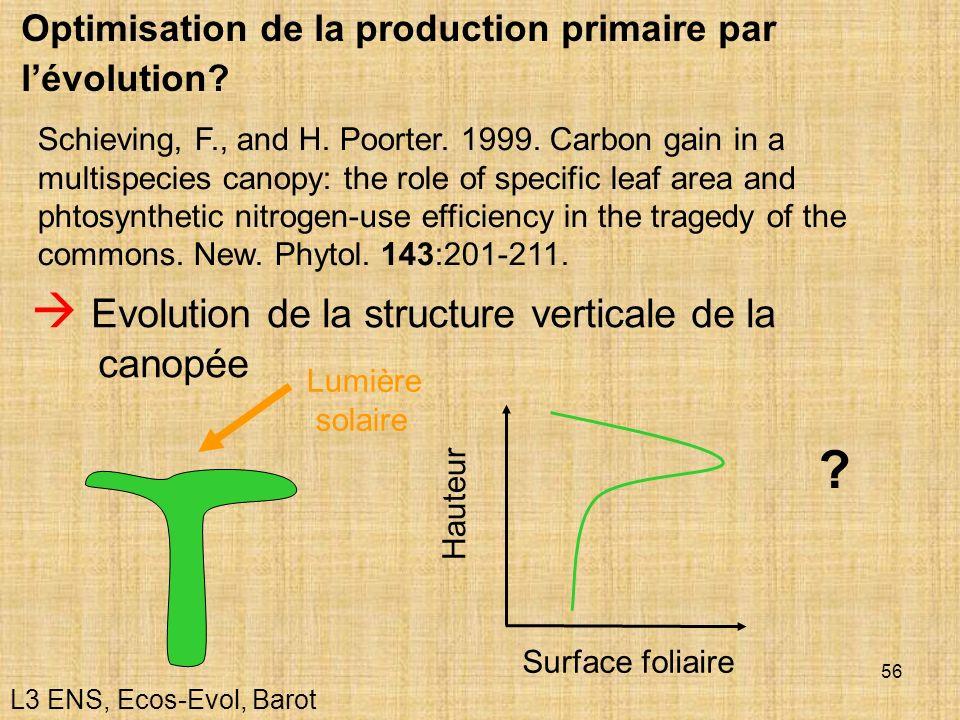  Evolution de la structure verticale de la canopée
