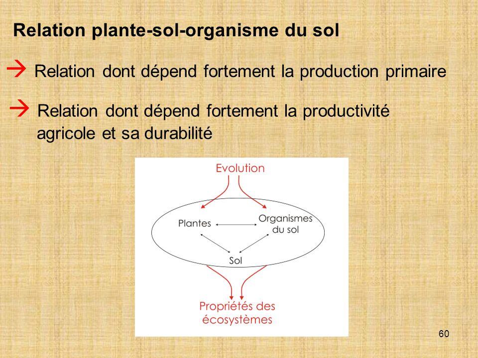  Relation dont dépend fortement la production primaire