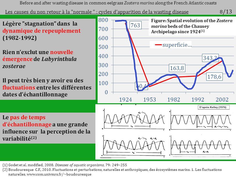Légère stagnation dans la dynamique de repeuplement (1982-1992)