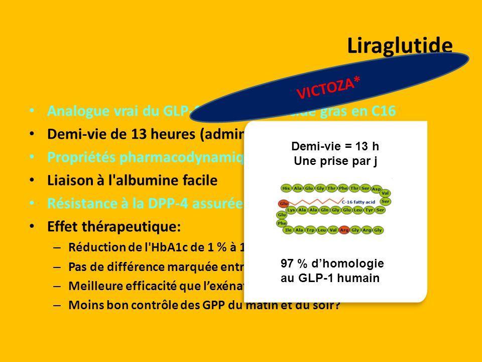 Liraglutide VICTOZA* Analogue vrai du GLP-1 greffé d un acide gras en C16. Demi-vie de 13 heures (administration une fois par jour)