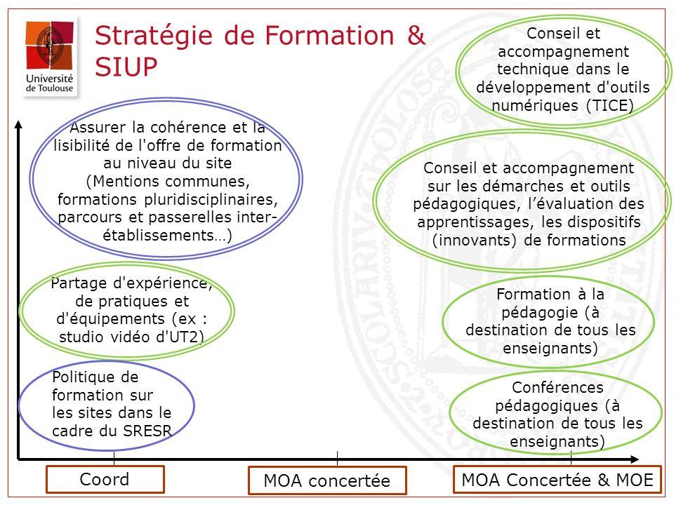 Stratégie de Formation & SIUP