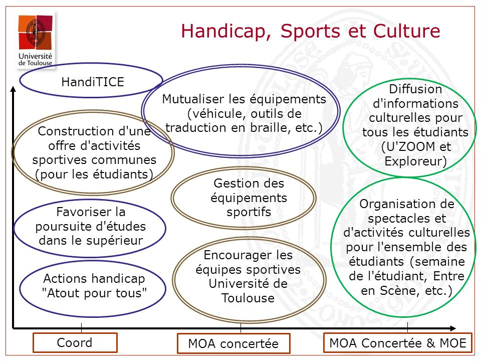 Handicap, Sports et Culture