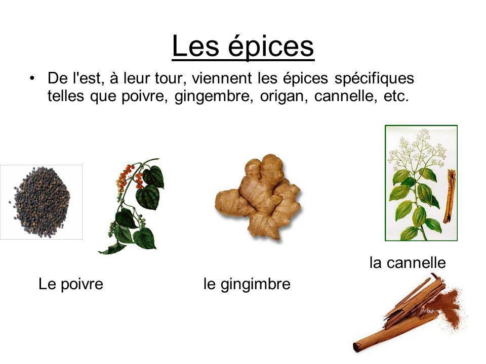 Les épices De l est, à leur tour, viennent les épices spécifiques telles que poivre, gingembre, origan, cannelle, etc.