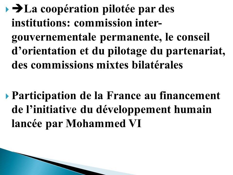 La coopération pilotée par des institutions: commission inter- gouvernementale permanente, le conseil d'orientation et du pilotage du partenariat, des commissions mixtes bilatérales