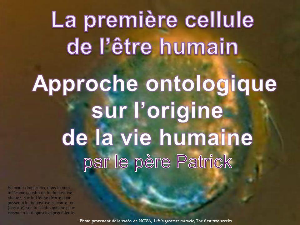 La première cellule de l'être humain Approche ontologique