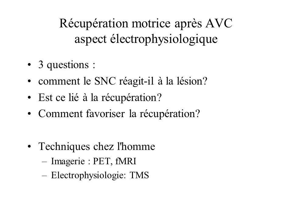 Récupération motrice après AVC aspect électrophysiologique