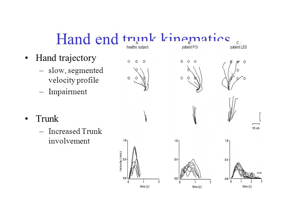 Hand end trunk kinematics.