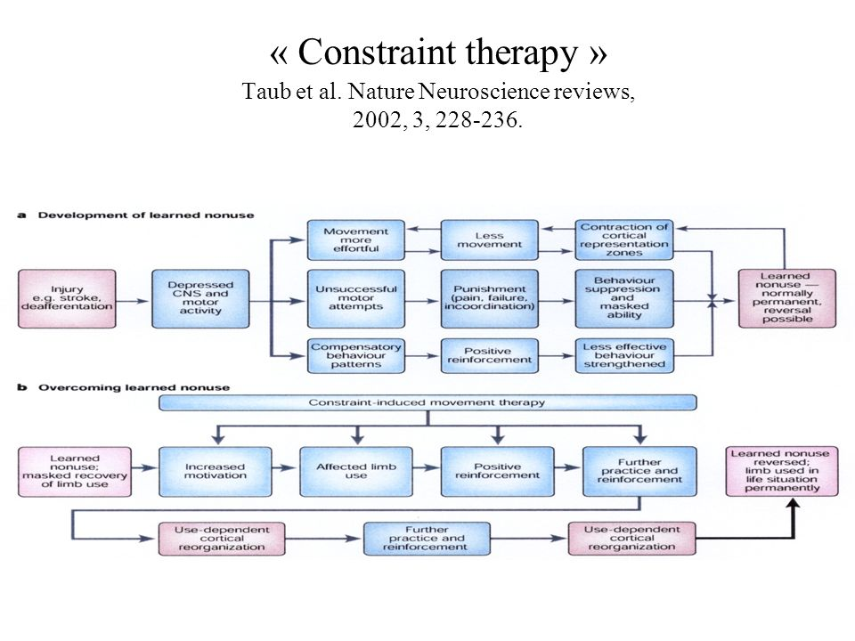 « Constraint therapy » Taub et al