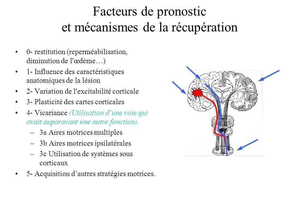 Facteurs de pronostic et mécanismes de la récupération