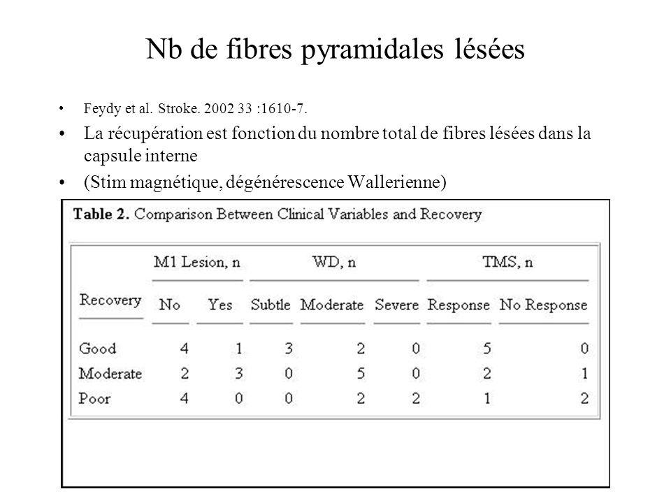 Nb de fibres pyramidales lésées