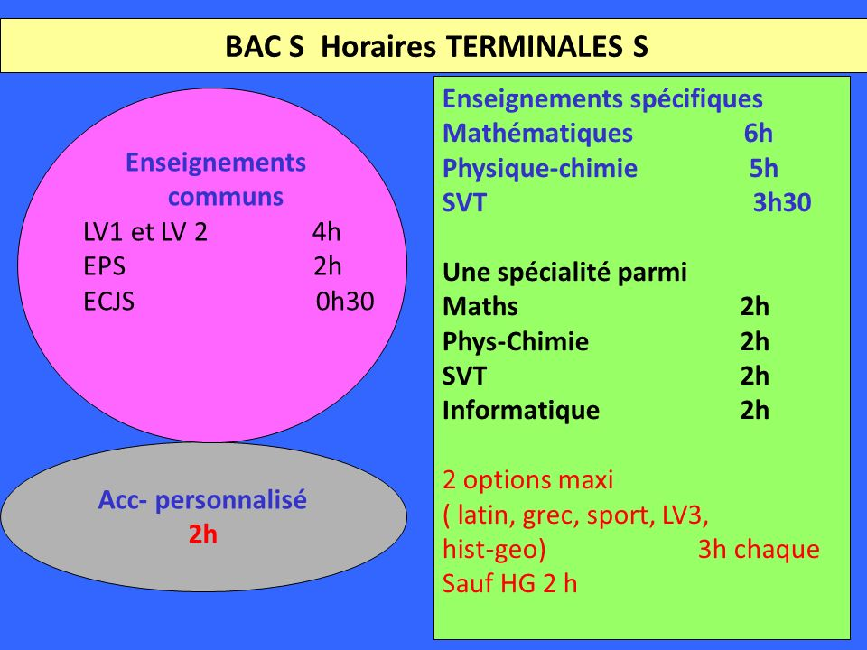 BAC S Horaires TERMINALES S