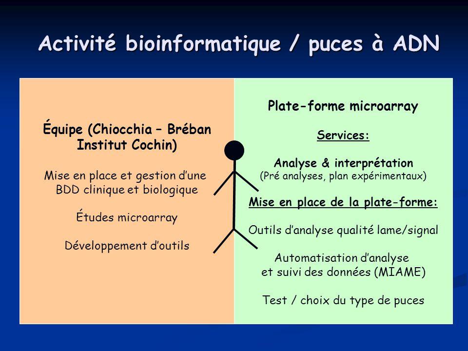 Activité bioinformatique / puces à ADN