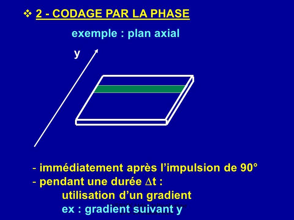 CNEBMN Atelier de Biophysique 29/3/2002 Ilana Peretti
