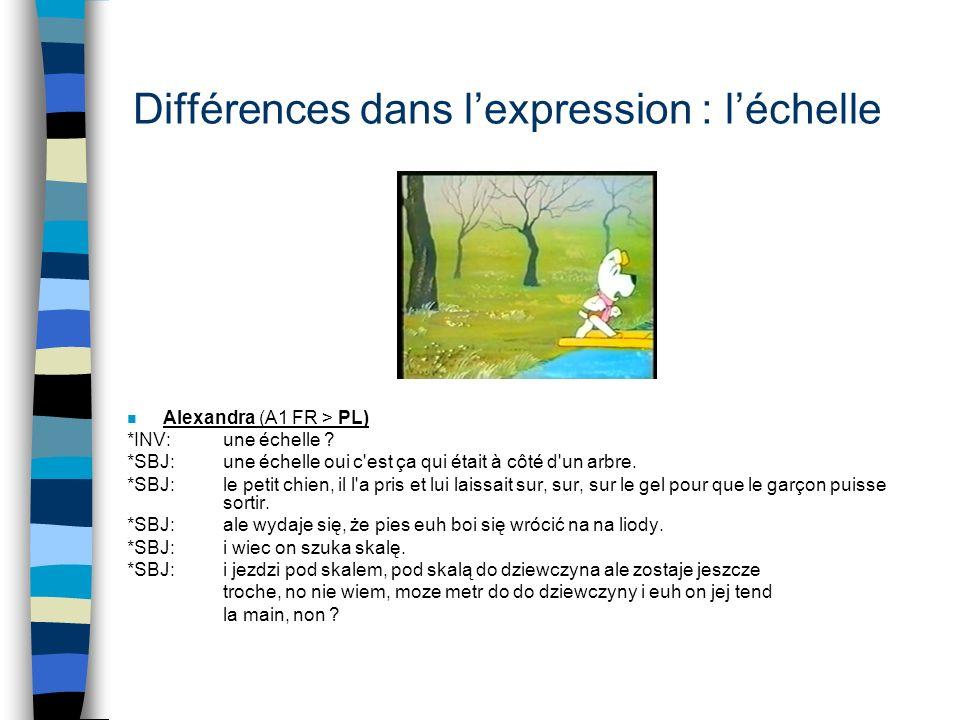 Différences dans l'expression : l'échelle