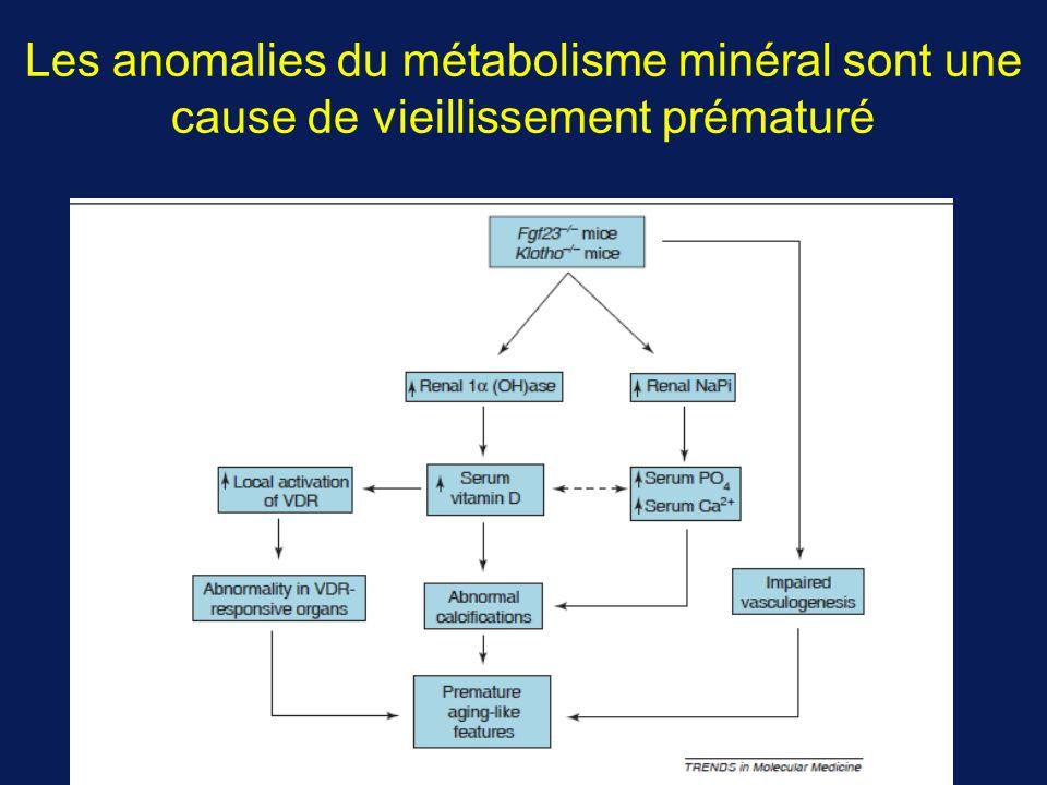 Les anomalies du métabolisme minéral sont une cause de vieillissement prématuré