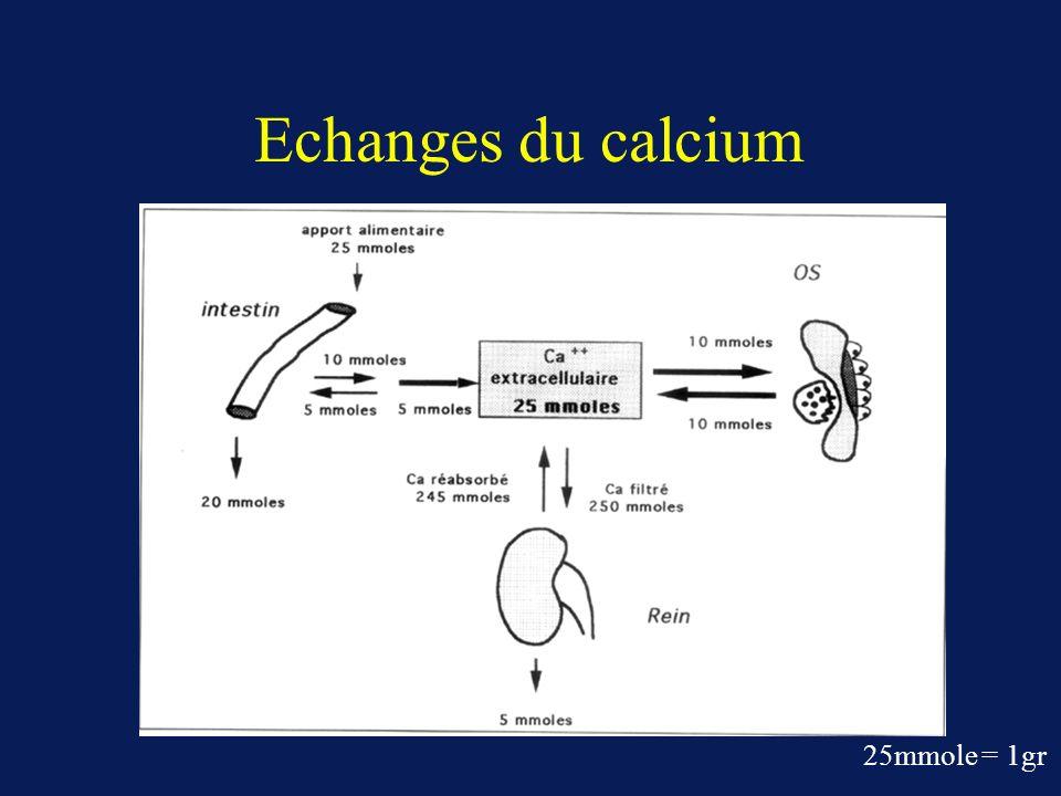 Echanges du calcium 25mmole = 1gr