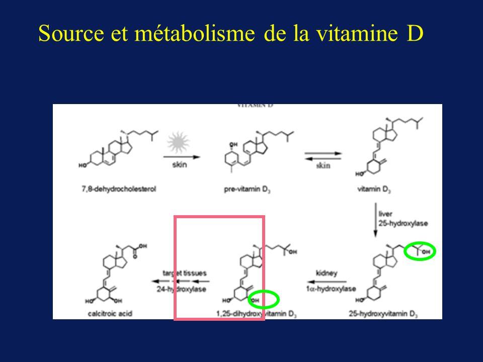 Source et métabolisme de la vitamine D