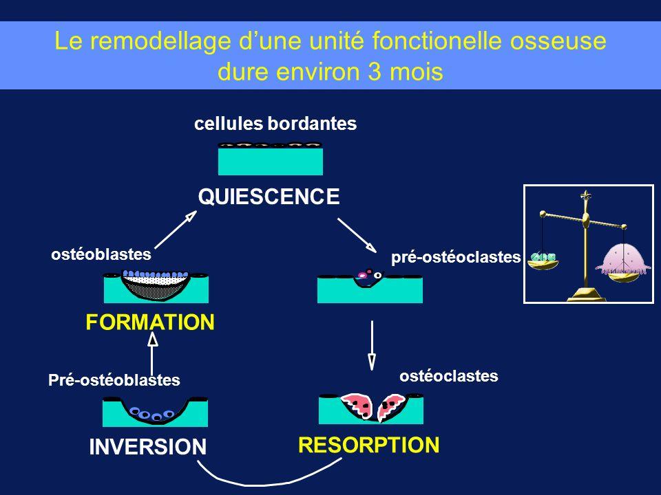 Le remodellage d'une unité fonctionelle osseuse