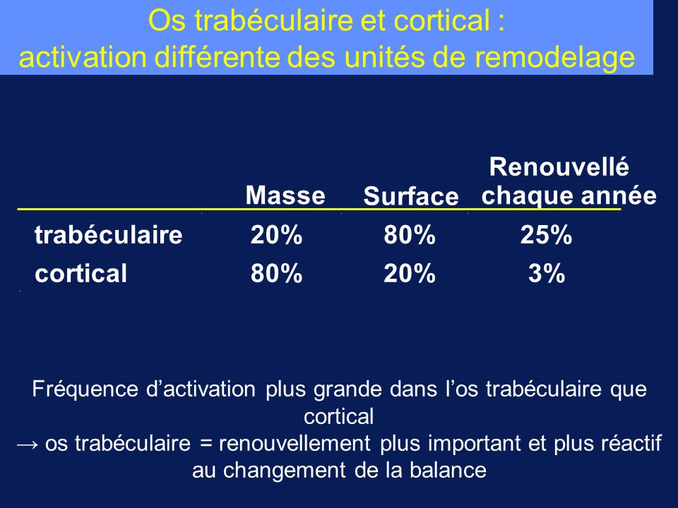 Fréquence d'activation plus grande dans l'os trabéculaire que cortical