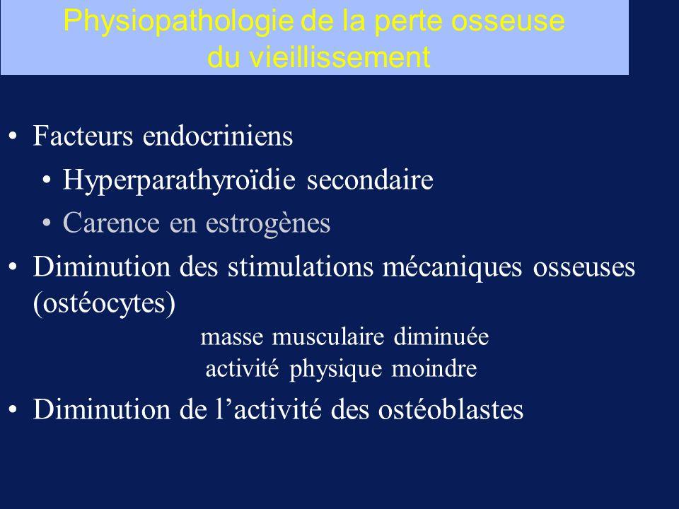 Physiopathologie de la perte osseuse du vieillissement