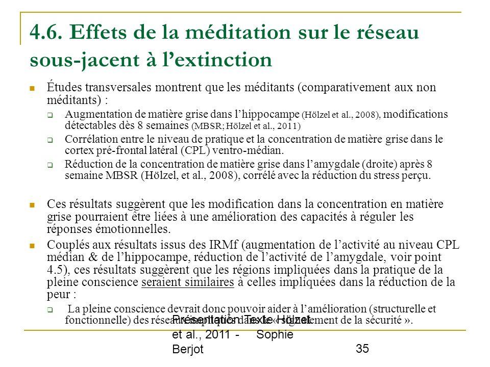 4.6. Effets de la méditation sur le réseau sous-jacent à l'extinction