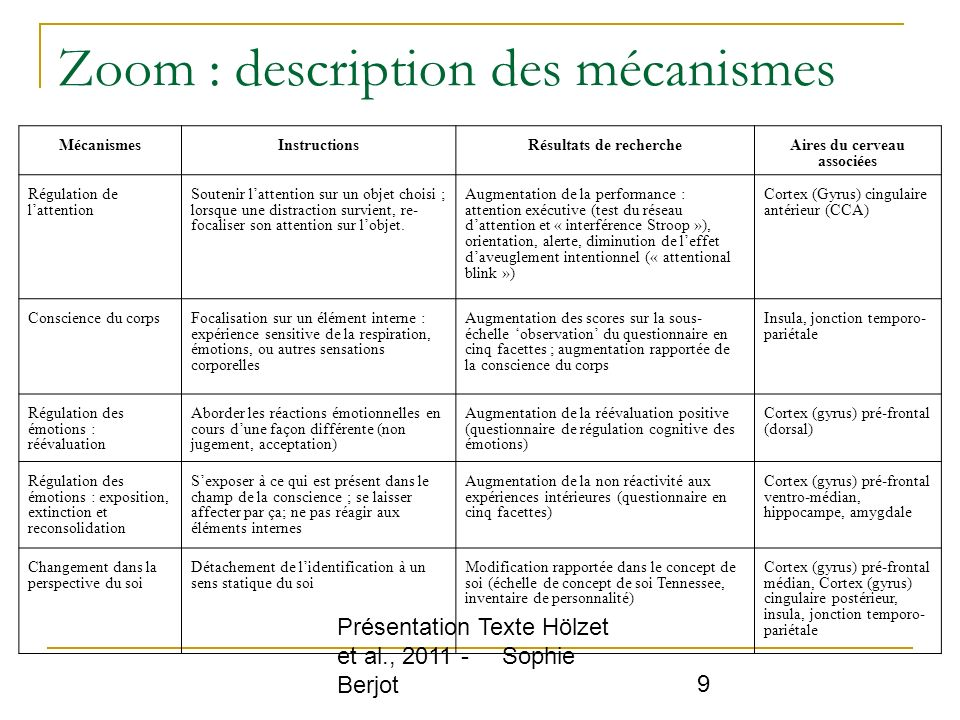 Zoom : description des mécanismes