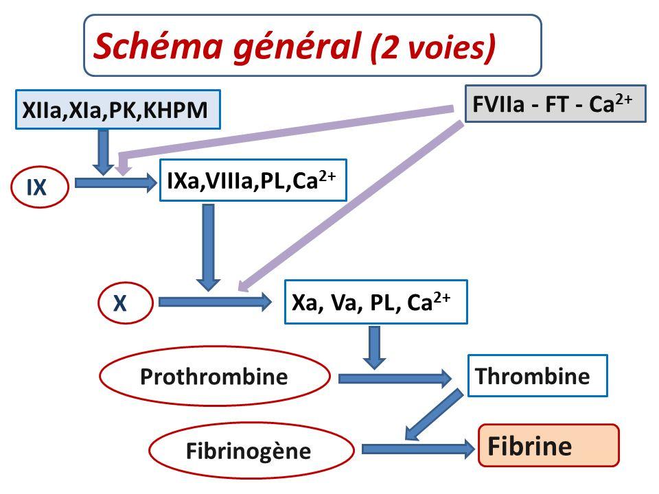Schéma général (2 voies)