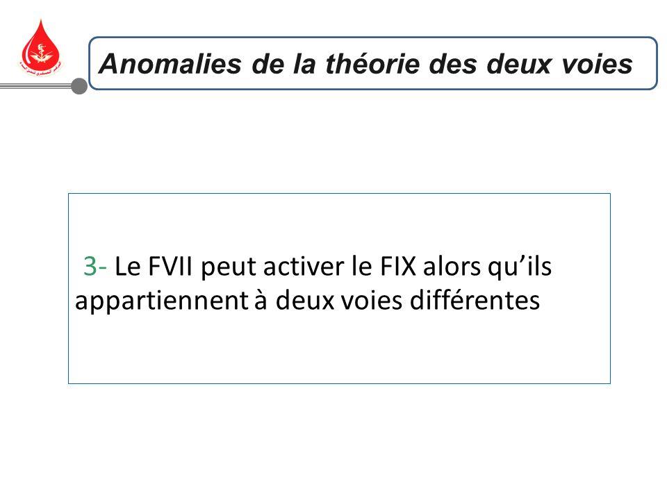 3- Le FVII peut activer le FIX alors qu'ils