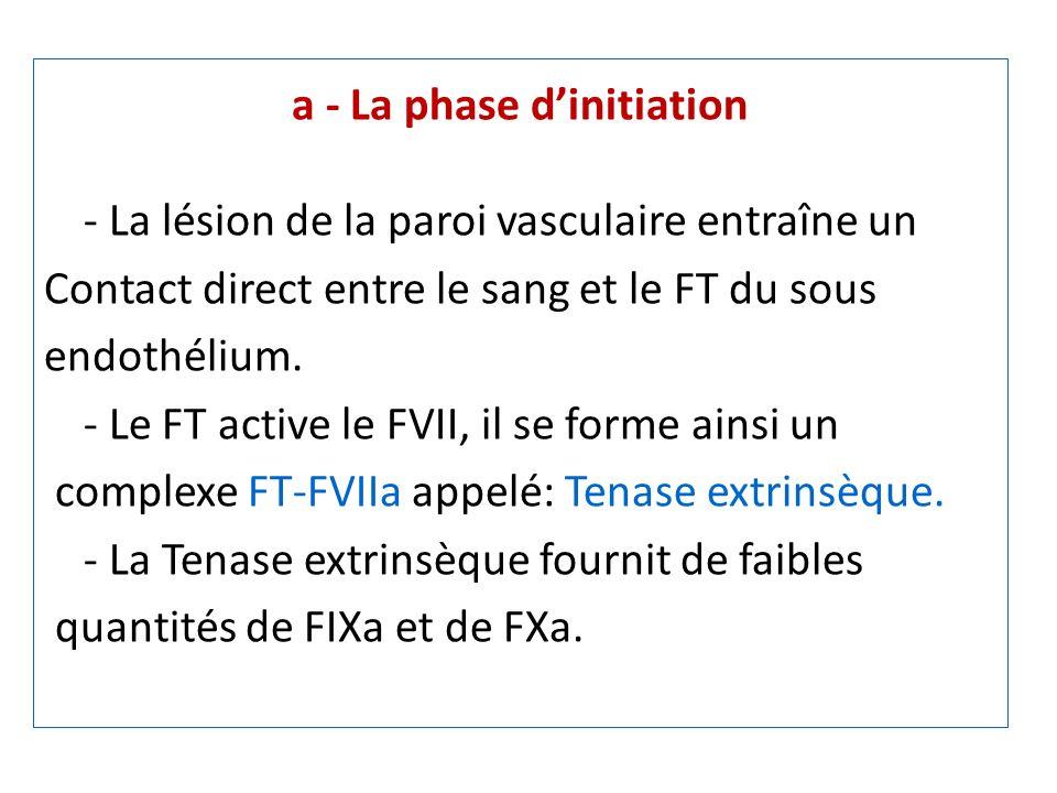 a - La phase d'initiation
