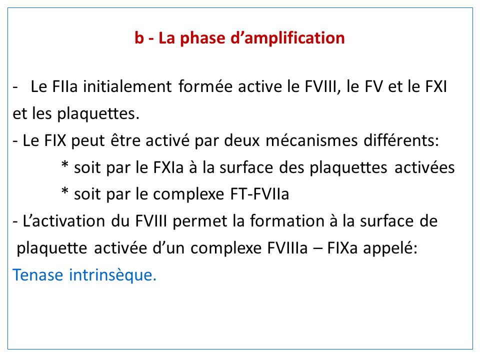 b - La phase d'amplification