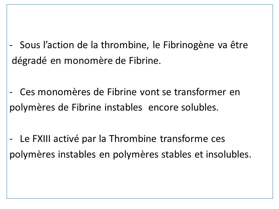 Sous l'action de la thrombine, le Fibrinogène va être