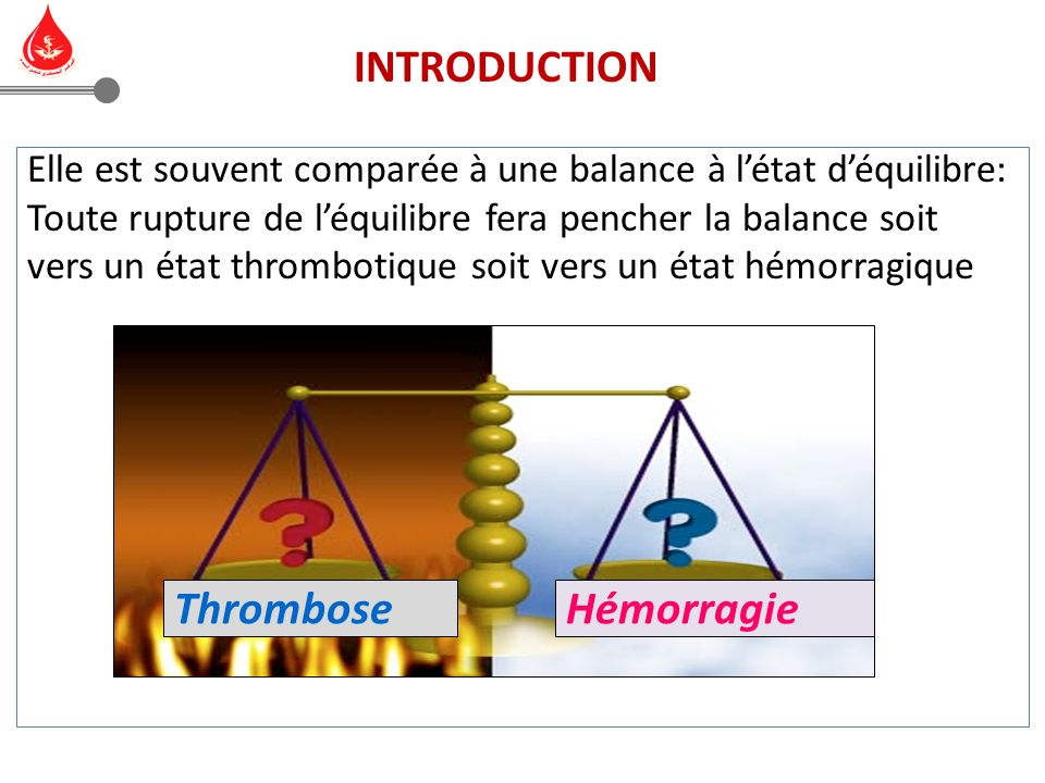INTRODUCTION Thrombose Hémorragie