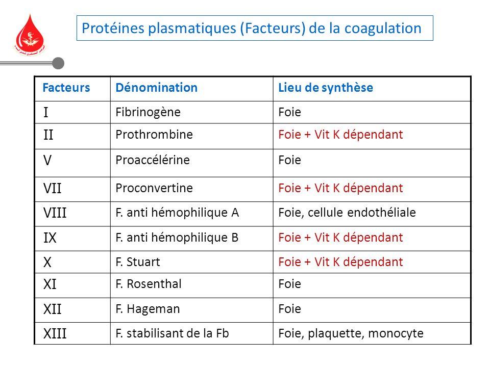 Protéines plasmatiques (Facteurs) de la coagulation