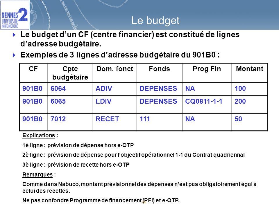 Le budget Le budget d'un CF (centre financier) est constitué de lignes d'adresse budgétaire. Exemples de 3 lignes d'adresse budgétaire du 901B0 :