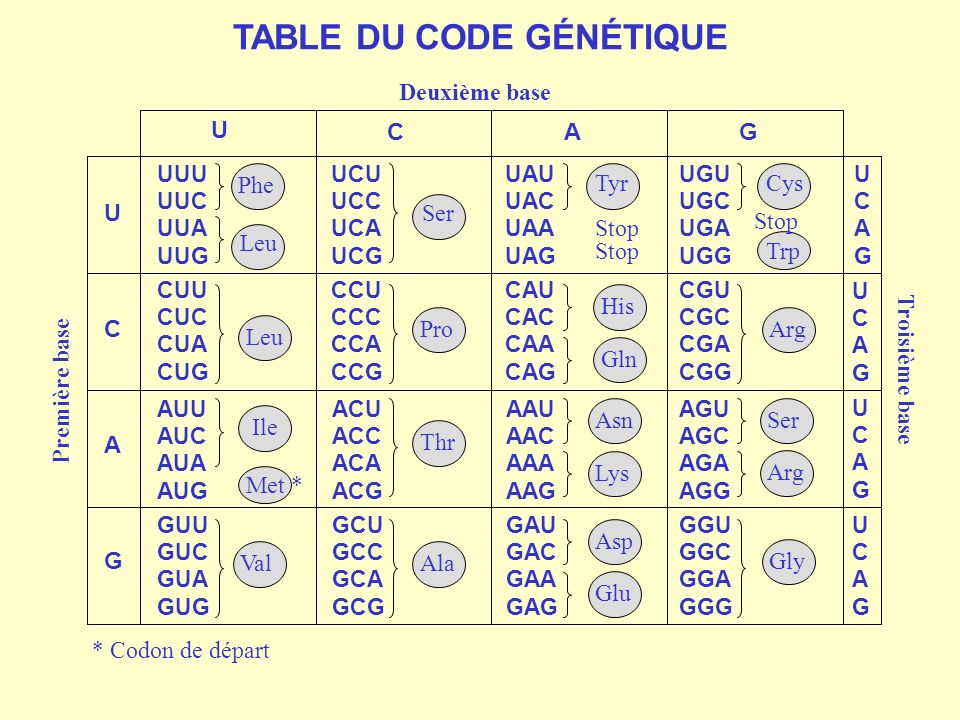 TABLE DU CODE GÉNÉTIQUE