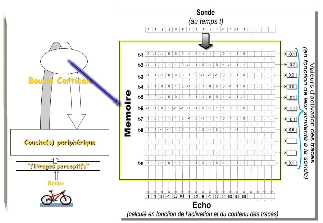 Couche(s) periphérique ''filtrages perceptifs''