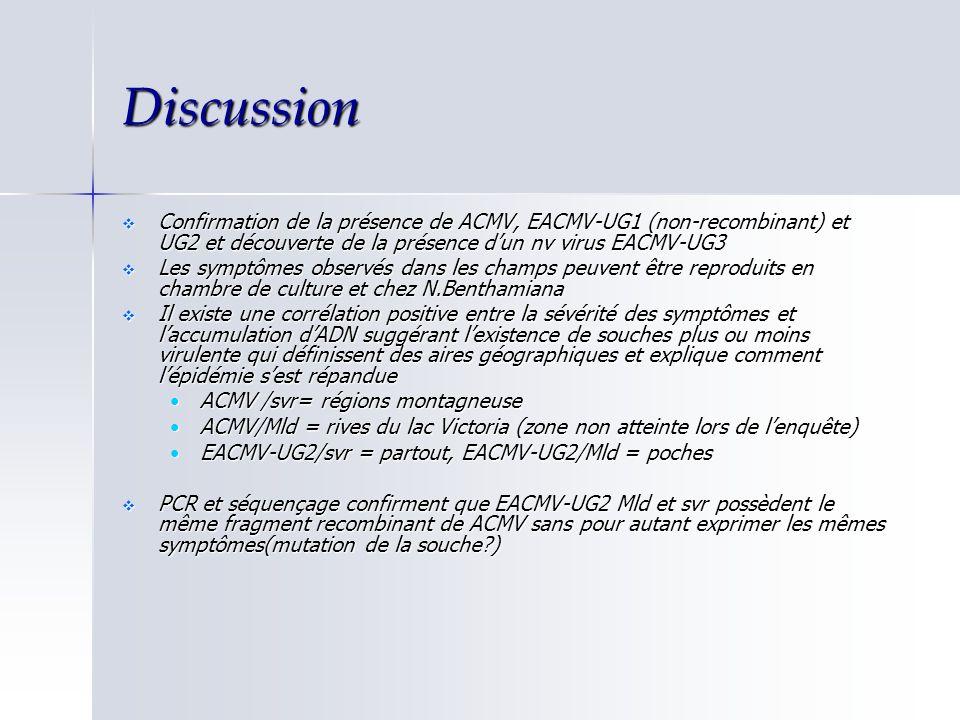 Discussion Confirmation de la présence de ACMV, EACMV-UG1 (non-recombinant) et UG2 et découverte de la présence d'un nv virus EACMV-UG3.