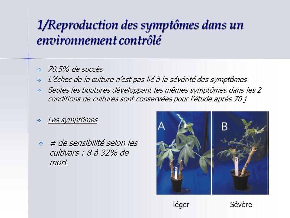 1/Reproduction des symptômes dans un environnement contrôlé