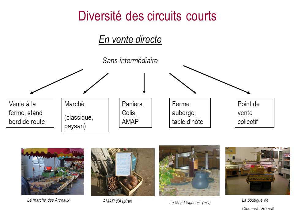 Diversité des circuits courts