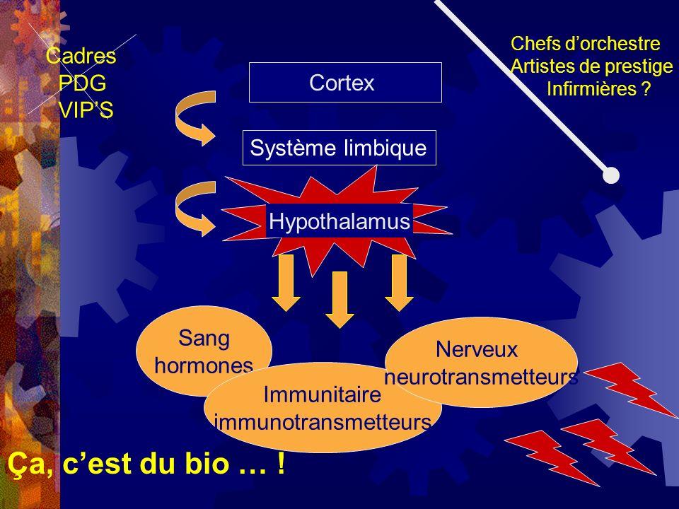 Ça, c'est du bio … ! Cadres PDG VIP'S Cortex Système limbique