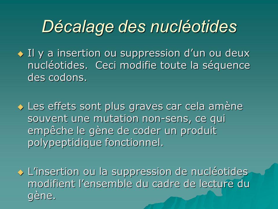 Décalage des nucléotides