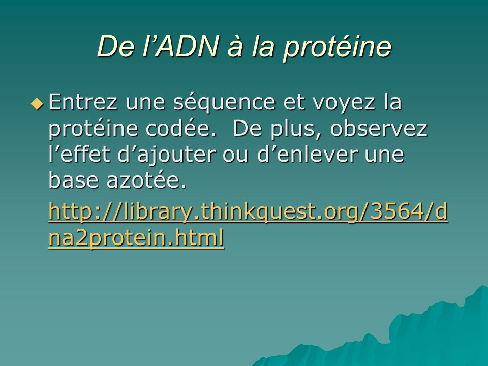 De l'ADN à la protéine Entrez une séquence et voyez la protéine codée. De plus, observez l'effet d'ajouter ou d'enlever une base azotée.