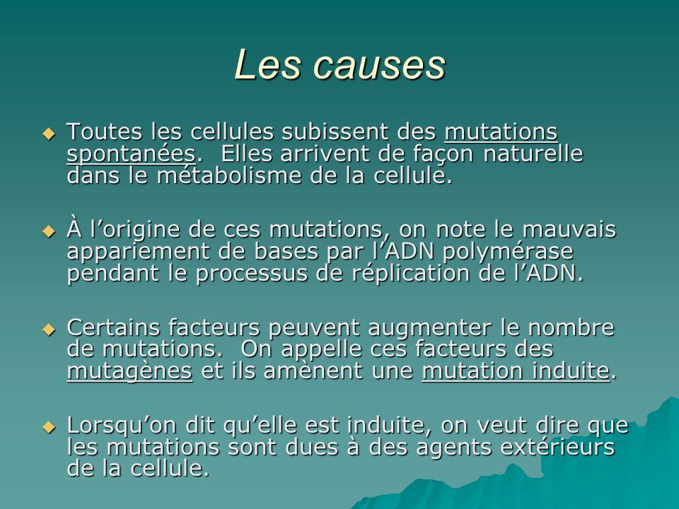 Les causes Toutes les cellules subissent des mutations spontanées. Elles arrivent de façon naturelle dans le métabolisme de la cellule.