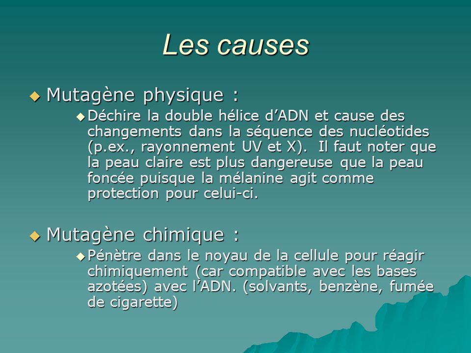Les causes Mutagène physique : Mutagène chimique :